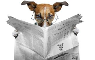Newspaper Files Bankruptcy - The Dog of the Day 02-13-2020